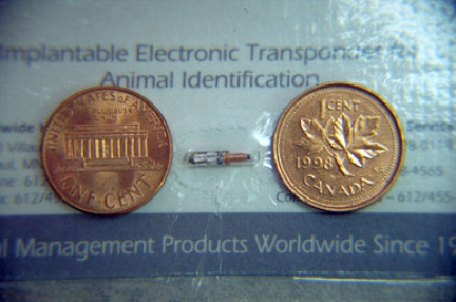 Microchip size example